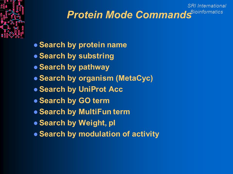 SRI International Bioinformatics Protein Mode Commands Search by protein name Search by substring Search by pathway Search by organism (MetaCyc) Search by UniProt Acc Search by GO term Search by MultiFun term Search by Weight, pI Search by modulation of activity