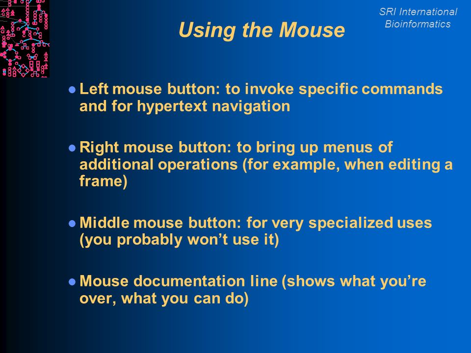 SRI International Bioinformatics Using the Mouse Left mouse button: to invoke specific commands and for hypertext navigation Right mouse button: to bring up menus of additional operations (for example, when editing a frame) Middle mouse button: for very specialized uses (you probably wont use it) Mouse documentation line (shows what youre over, what you can do)
