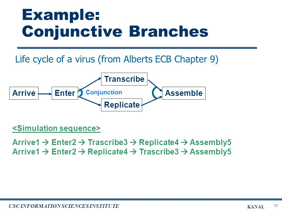 13 USC INFORMATION SCIENCES INSTITUTE KANAL Example: Conjunctive Branches Arrive1 Enter2 Trascribe3 Replicate4 Assembly5 Arrive1 Enter2 Replicate4 Trascribe3 Assembly5 Life cycle of a virus (from Alberts ECB Chapter 9) Enter Transcribe Assemble Replicate Conjunction Arrive