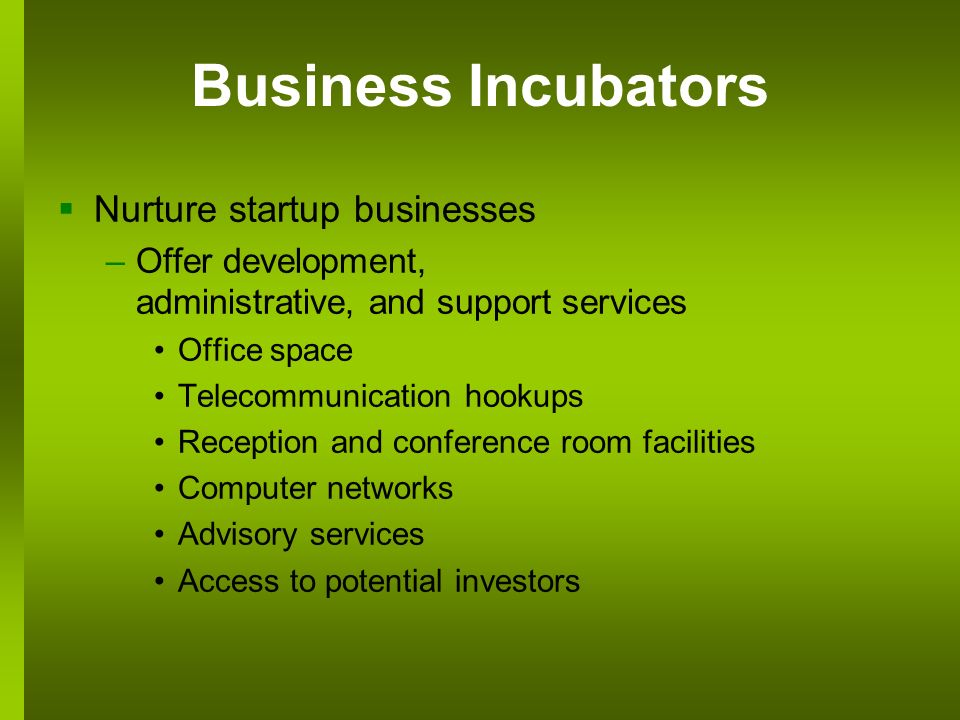 Business Incubators Nurture startup businesses –Offer development, administrative, and support services Office space Telecommunication hookups Reception and conference room facilities Computer networks Advisory services Access to potential investors
