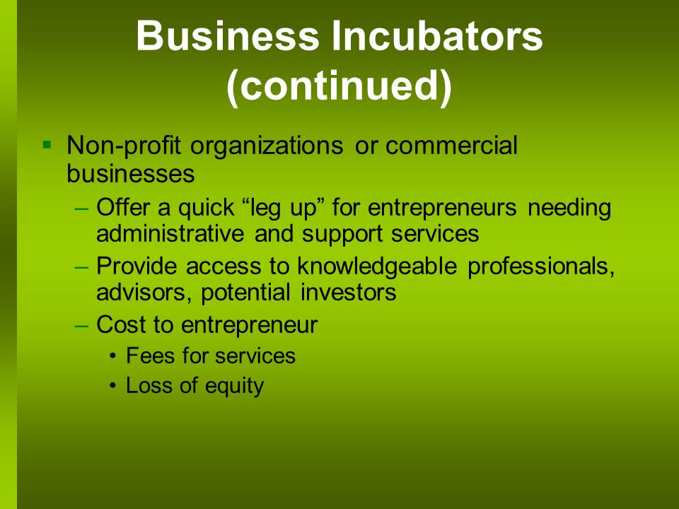 Business Incubators (continued) Non-profit organizations or commercial businesses –Offer a quick leg up for entrepreneurs needing administrative and support services –Provide access to knowledgeable professionals, advisors, potential investors –Cost to entrepreneur Fees for services Loss of equity