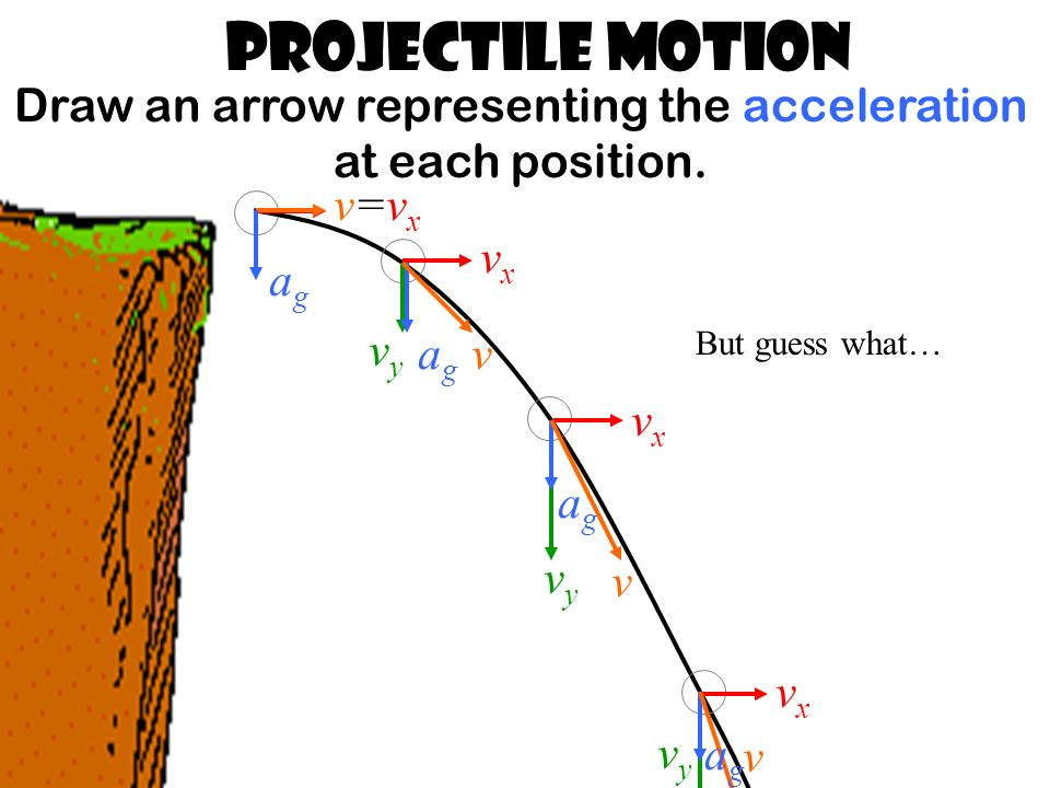 Projectile Motion Draw an arrow representing the acceleration at each position.