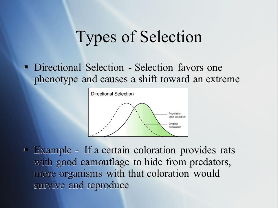 Types of Selection Directional Selection - Selection favors one phenotype and causes a shift toward an extreme Example - If a certain coloration provides rats with good camouflage to hide from predators, more organisms with that coloration would survive and reproduce Directional Selection - Selection favors one phenotype and causes a shift toward an extreme Example - If a certain coloration provides rats with good camouflage to hide from predators, more organisms with that coloration would survive and reproduce