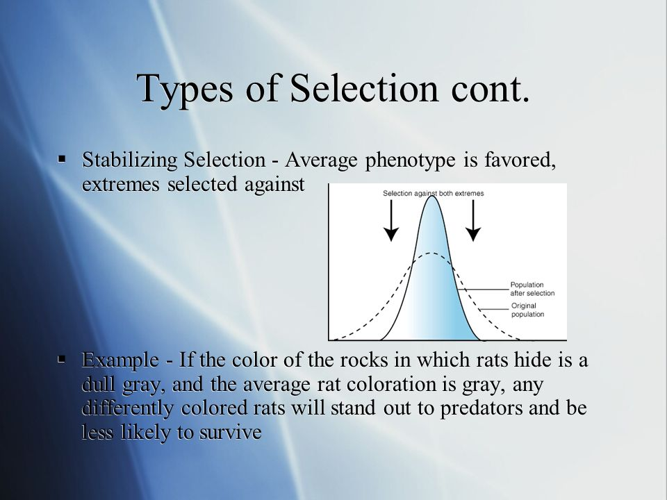 Types of Selection cont.