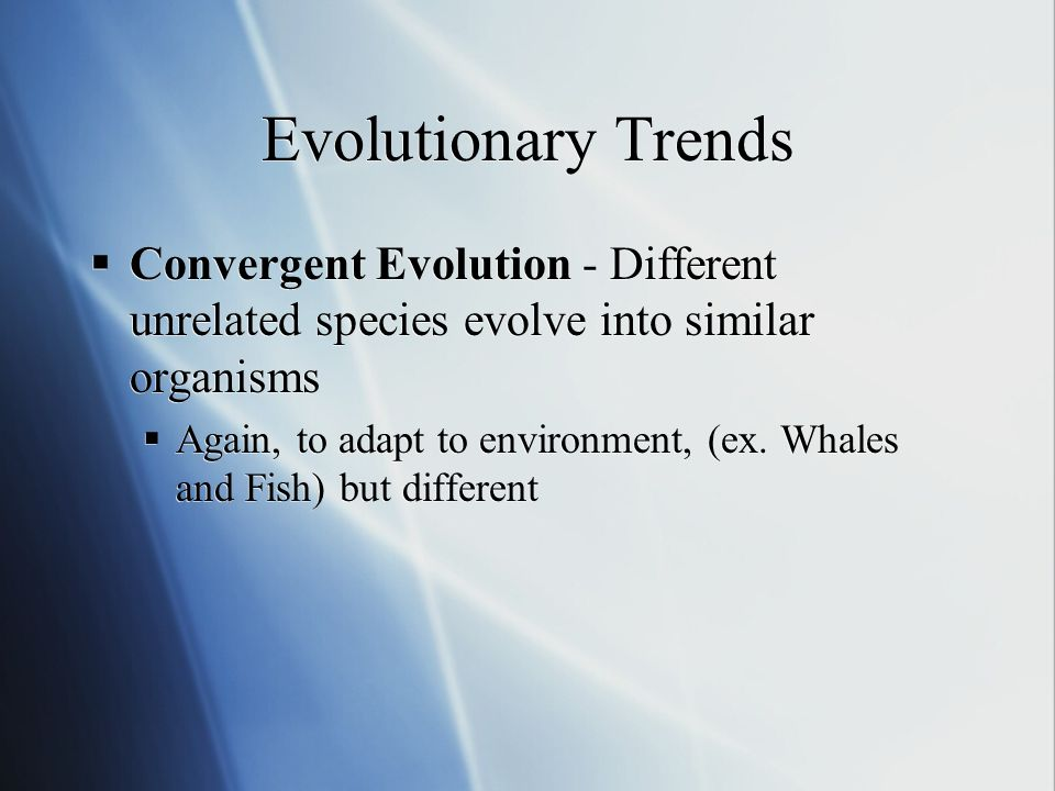 Evolutionary Trends Convergent Evolution - Different unrelated species evolve into similar organisms Again, to adapt to environment, (ex.