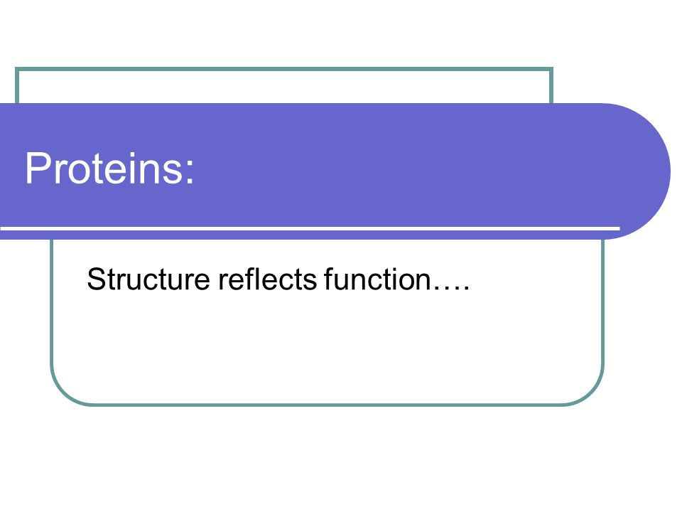 Proteins: Structure reflects function….