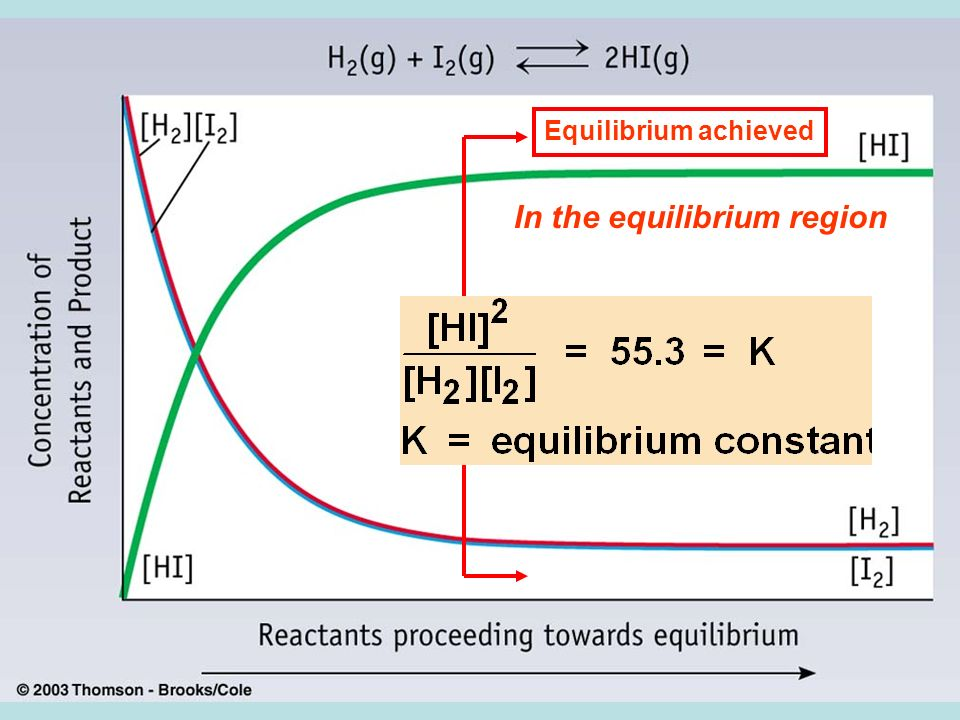 Equilibrium achieved In the equilibrium region