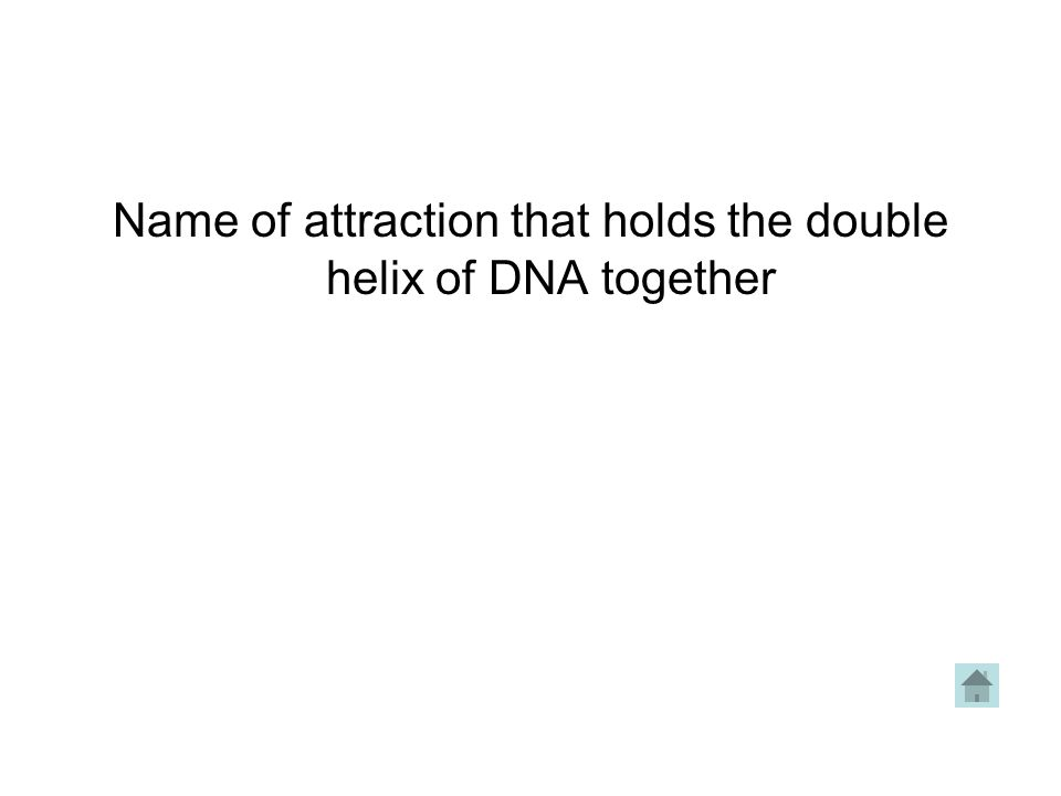 Name of attraction that holds the double helix of DNA together
