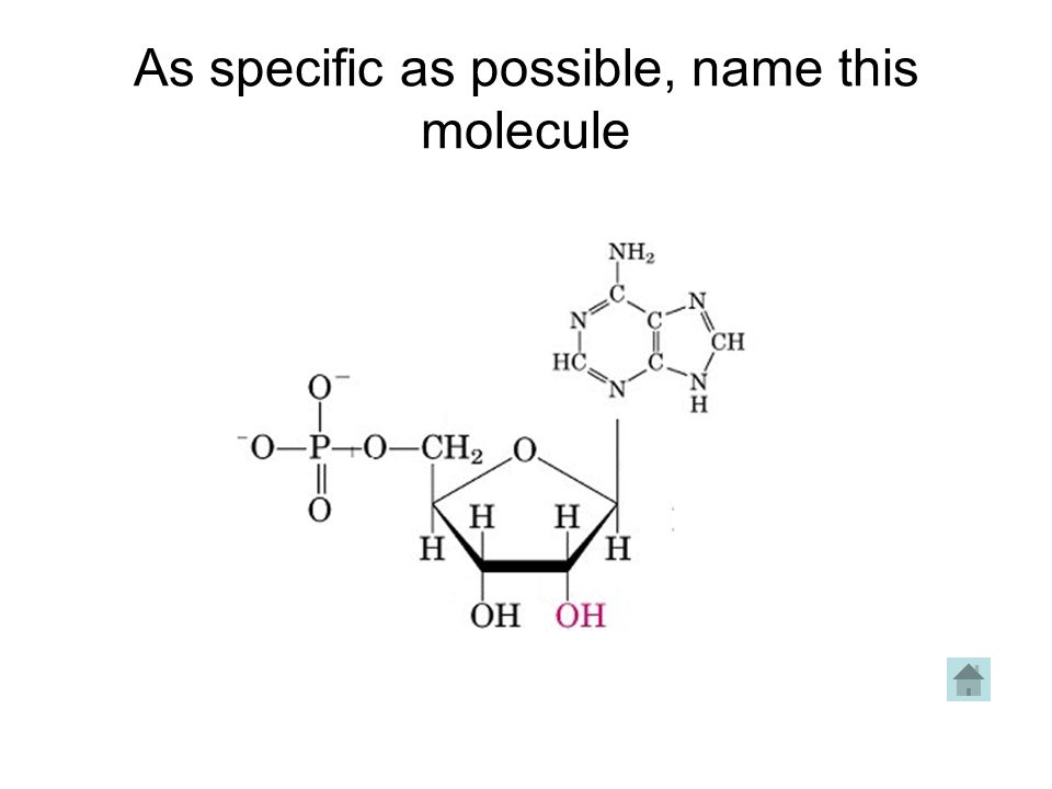 As specific as possible, name this molecule