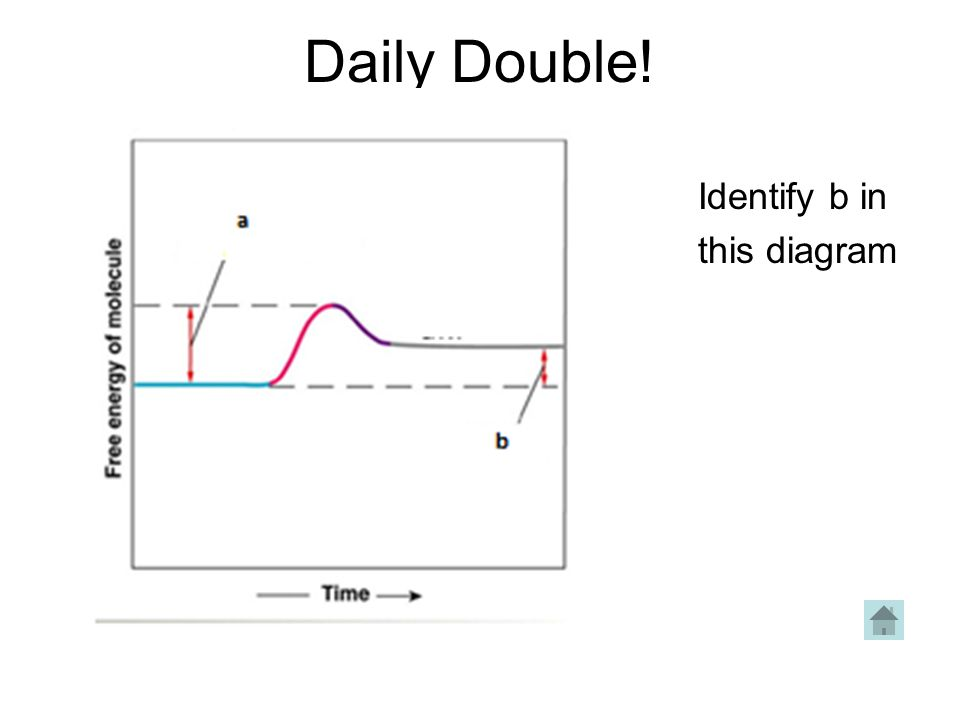 Daily Double! Identify b in this diagram