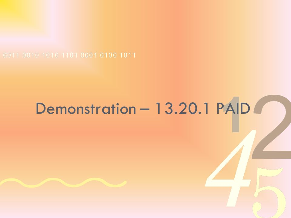 Demonstration – 13.20.1 PAID