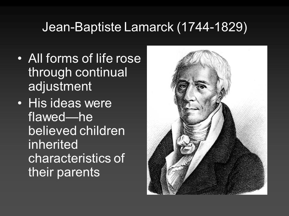 Jean-Baptiste Lamarck ( ) All forms of life rose through continual adjustment His ideas were flawedhe believed children inherited characteristics of their parents