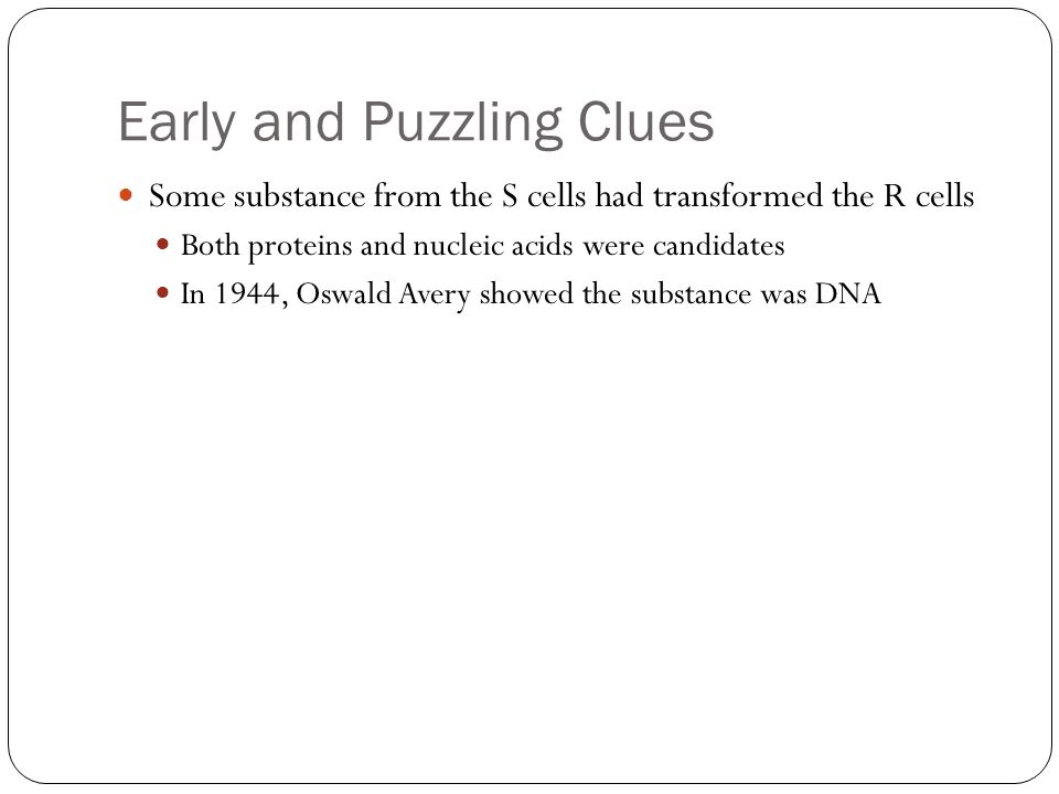 Early and Puzzling Clues Some substance from the S cells had transformed the R cells Both proteins and nucleic acids were candidates In 1944, Oswald Avery showed the substance was DNA