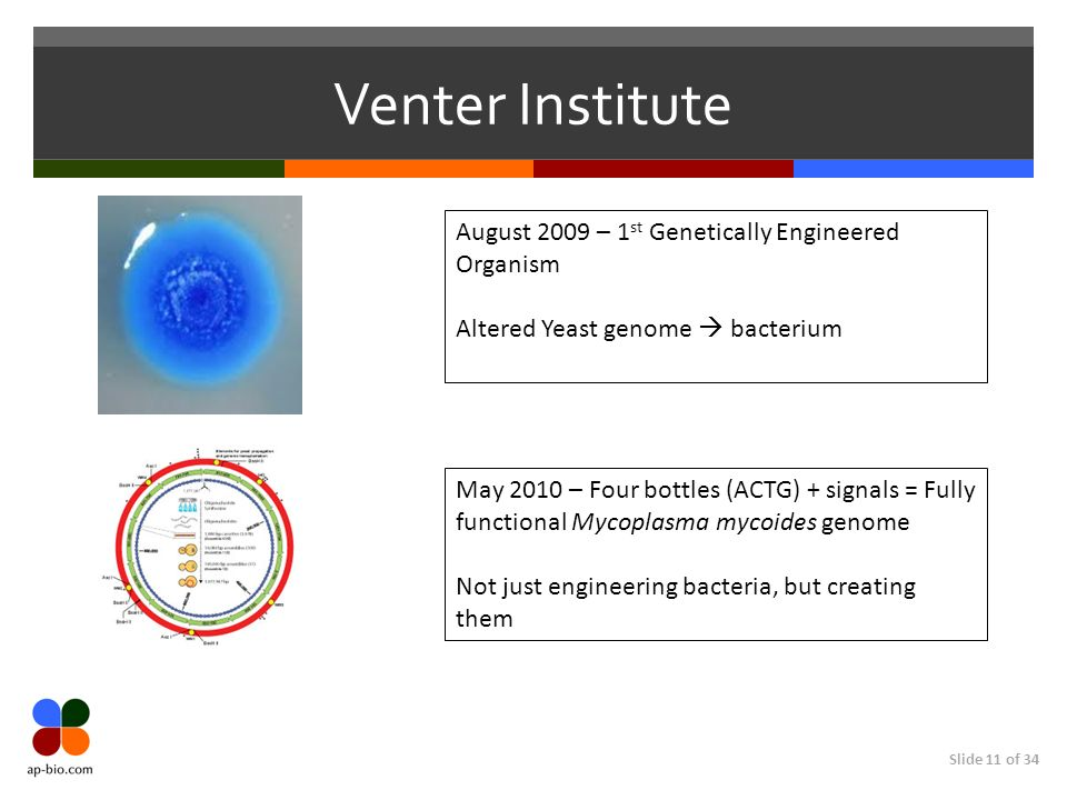 Slide 11 of 34 Venter Institute August 2009 – 1 st Genetically Engineered Organism Altered Yeast genome bacterium May 2010 – Four bottles (ACTG) + signals = Fully functional Mycoplasma mycoides genome Not just engineering bacteria, but creating them
