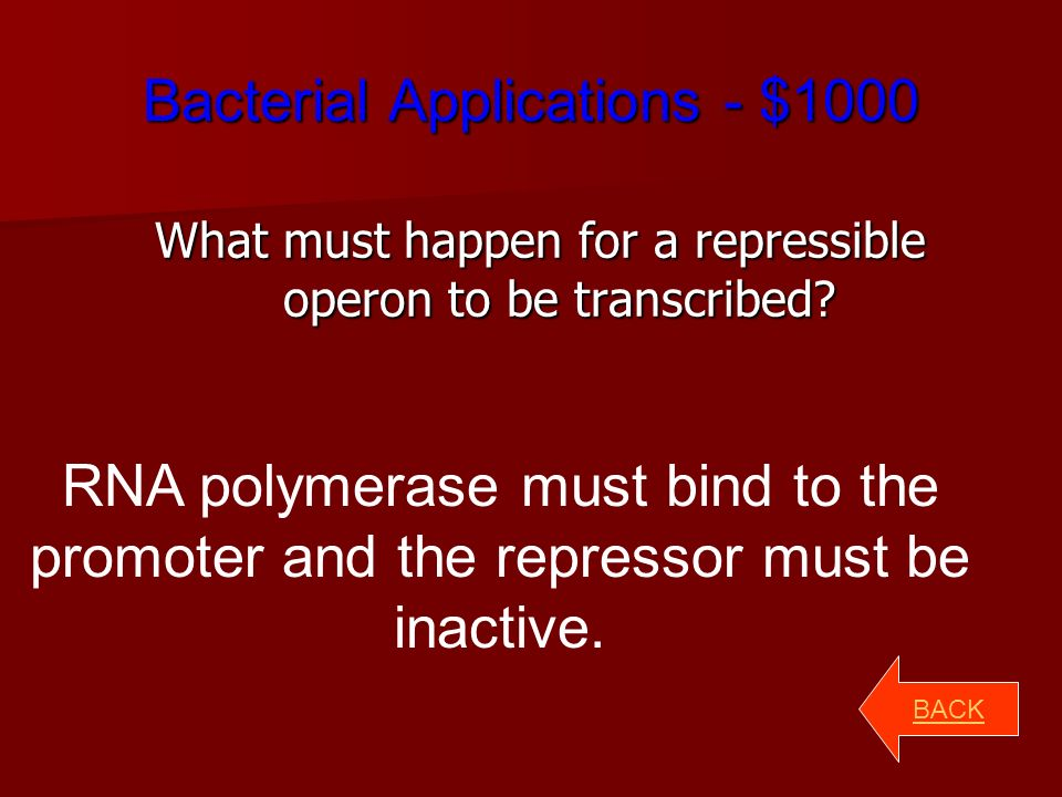 Bacterial Applications - $500 What does an operon consist of.