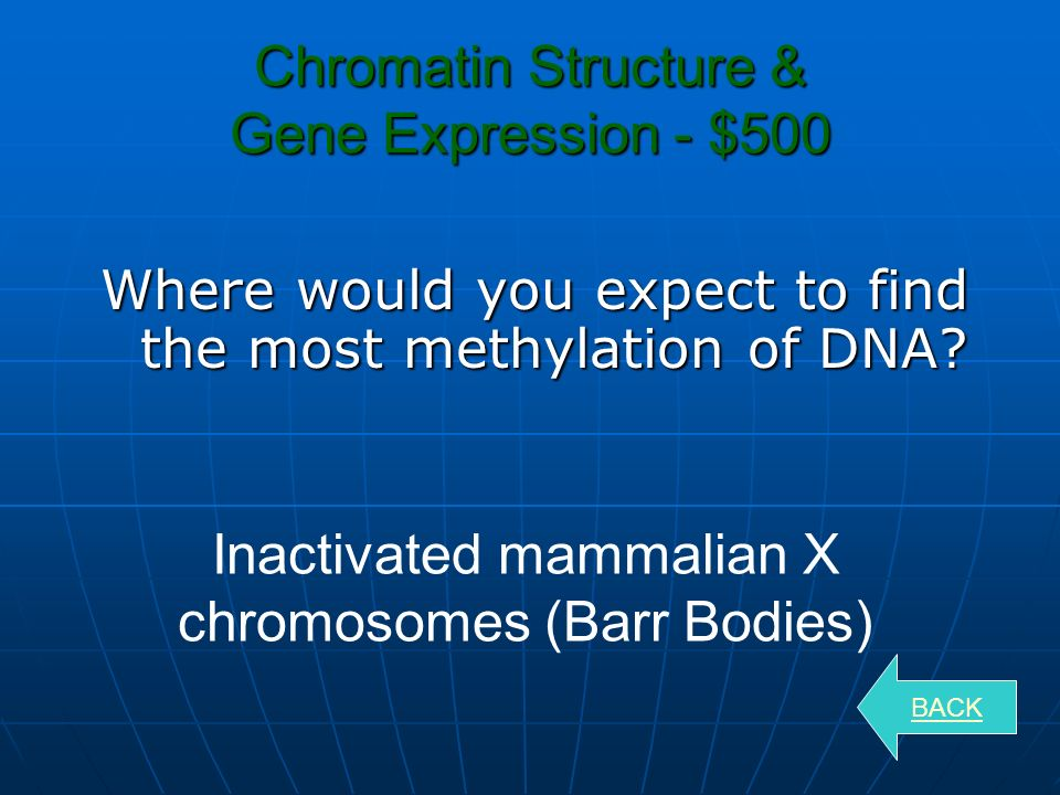 Chromatin Structure & Gene Expression - $300 What are the ways that genes can be turned on or off.