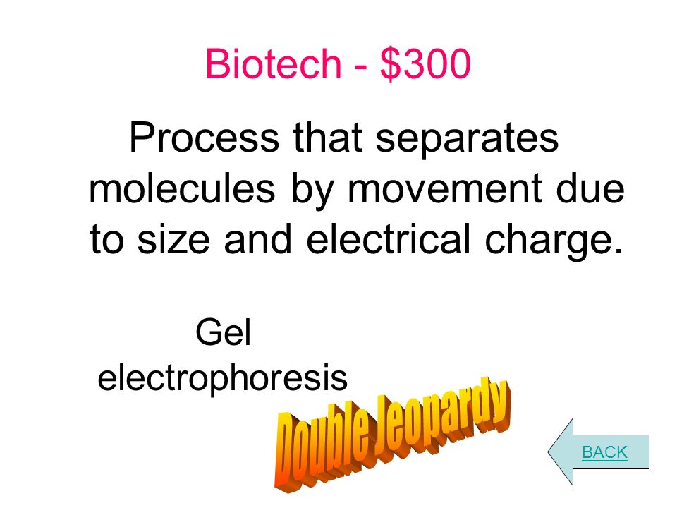 Biotech - $200 What is the enzymatic function of restriction enzymes.