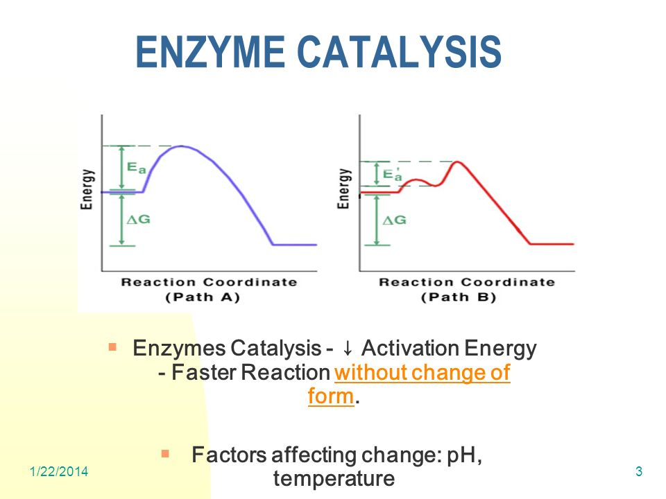 1/22/20143 ENZYME CATALYSIS Enzymes Catalysis - Activation Energy - Faster Reaction without change of form.