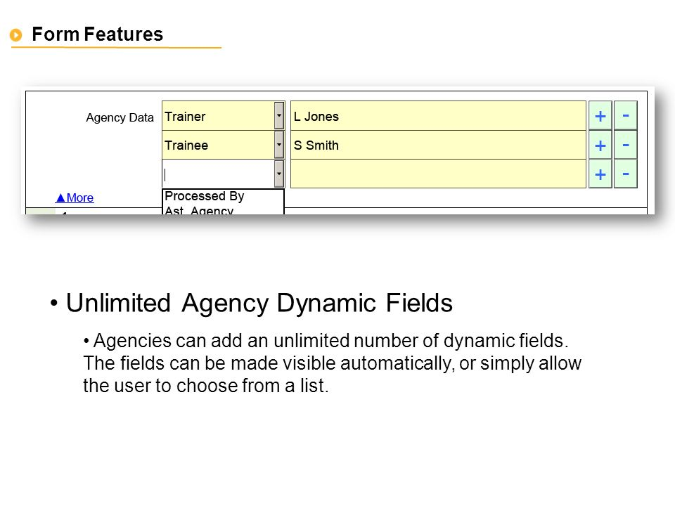 Form Features Unlimited Agency Dynamic Fields Agencies can add an unlimited number of dynamic fields.