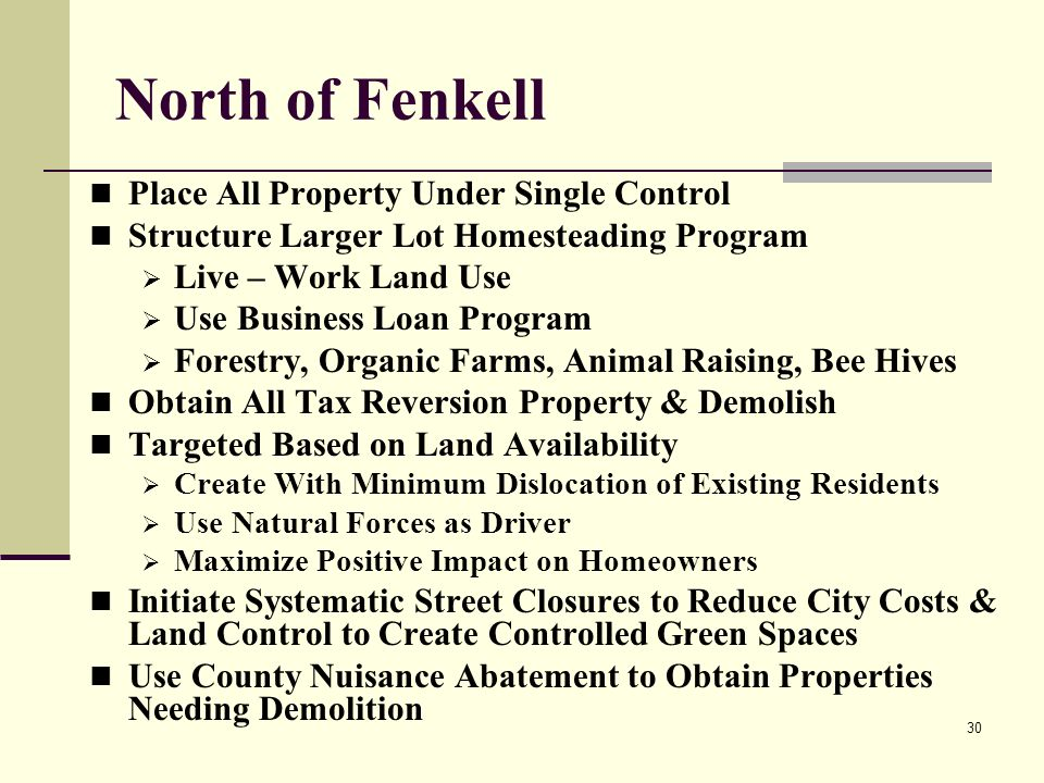 30 North of Fenkell Place All Property Under Single Control Structure Larger Lot Homesteading Program Live – Work Land Use Use Business Loan Program Forestry, Organic Farms, Animal Raising, Bee Hives Obtain All Tax Reversion Property & Demolish Targeted Based on Land Availability Create With Minimum Dislocation of Existing Residents Use Natural Forces as Driver Maximize Positive Impact on Homeowners Initiate Systematic Street Closures to Reduce City Costs & Land Control to Create Controlled Green Spaces Use County Nuisance Abatement to Obtain Properties Needing Demolition