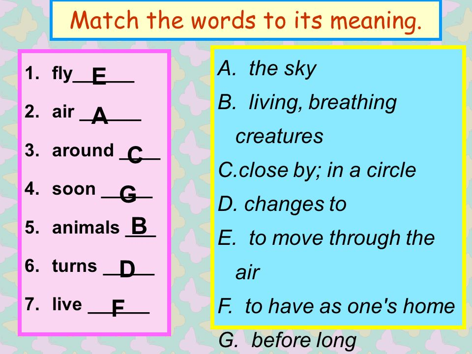 Match the words to its meaning. A. the sky B.