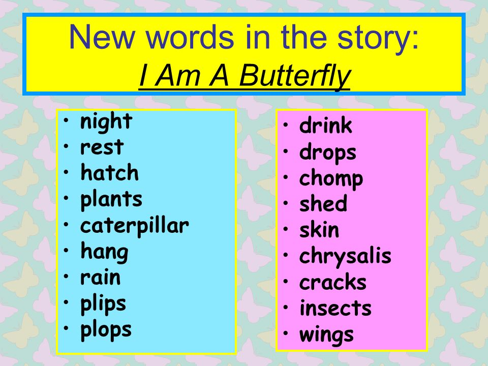 New words in the story: I Am A Butterfly night rest hatch plants caterpillar hang rain plips plops drink drops chomp shed skin chrysalis cracks insects wings