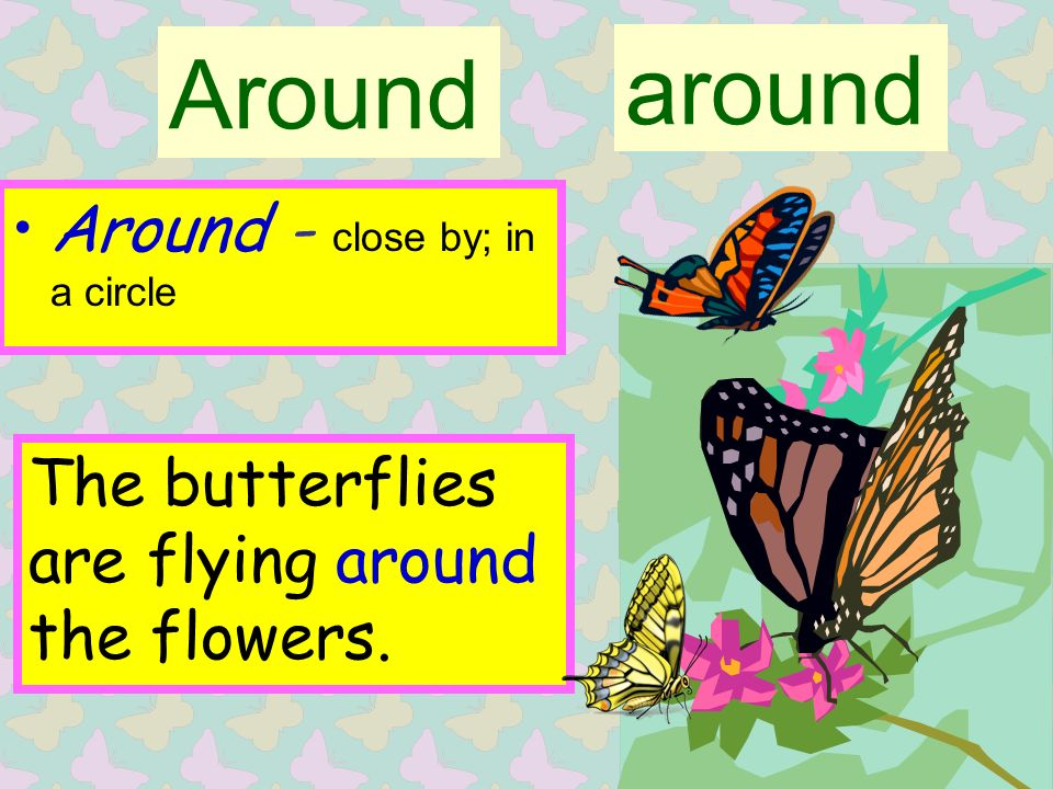 Around Around - close by; in a circle around The butterflies are flying around the flowers.