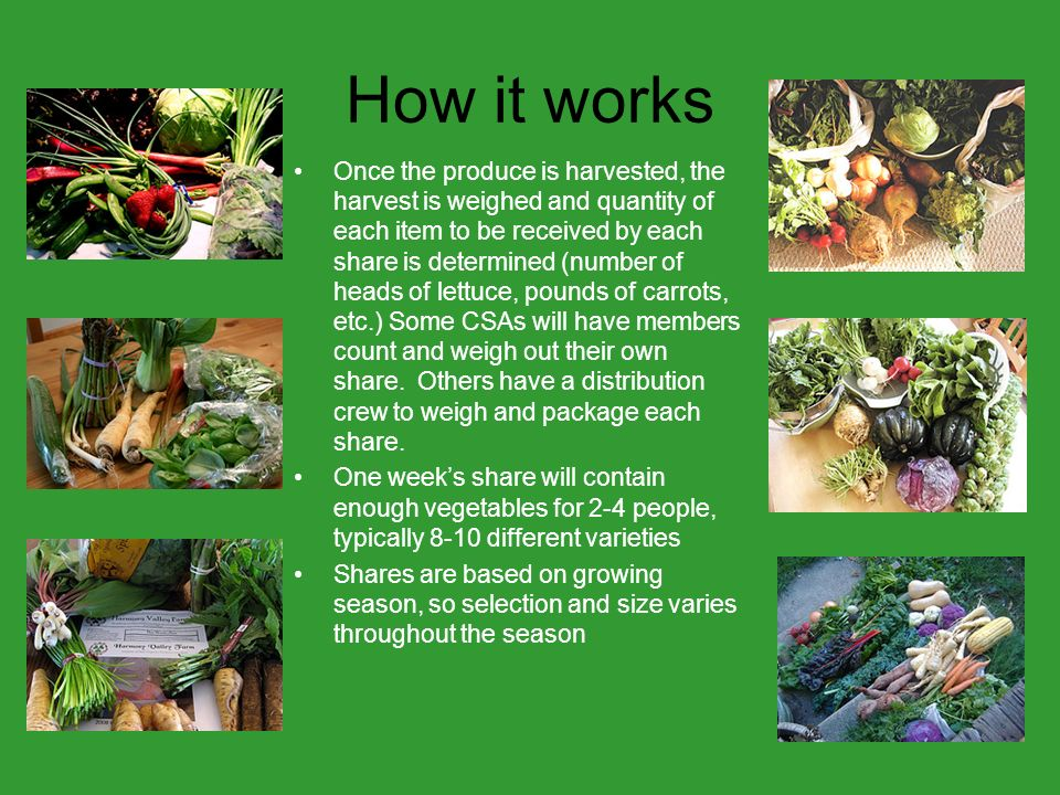 How it works Once the produce is harvested, the harvest is weighed and quantity of each item to be received by each share is determined (number of heads of lettuce, pounds of carrots, etc.) Some CSAs will have members count and weigh out their own share.