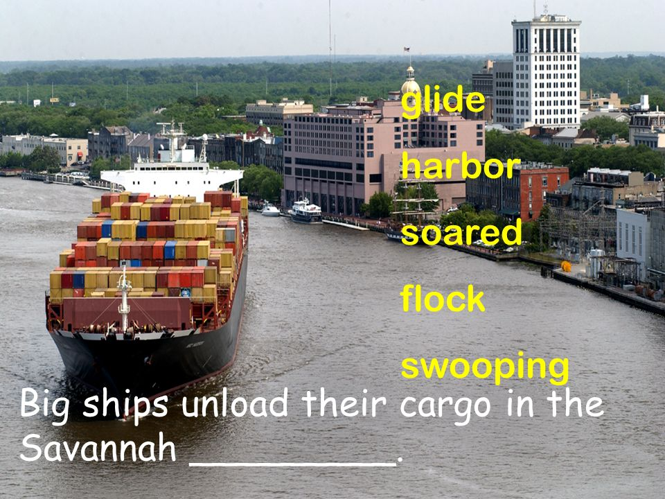 glide harbor soared flock swooping Big ships unload their cargo in the Savannah _________.