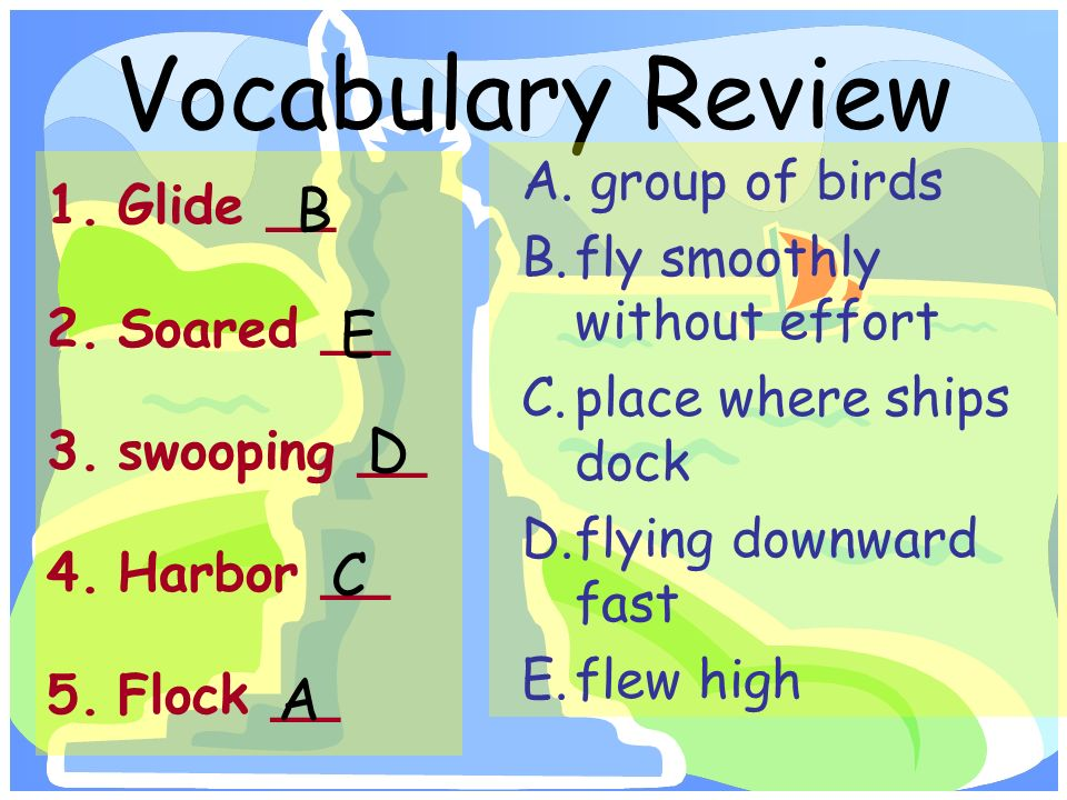 Vocabulary Review 1.Glide __ 2.Soared __ 3.swooping __ 4.Harbor __ 5.Flock __ A.