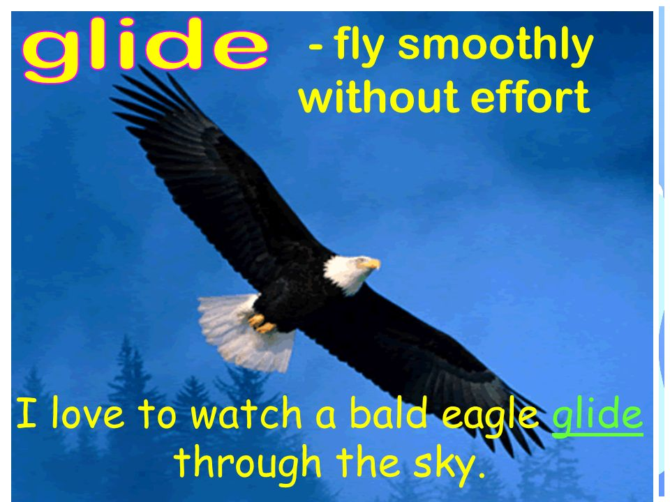 - fly smoothly without effort I love to watch a bald eagle glide through the sky.