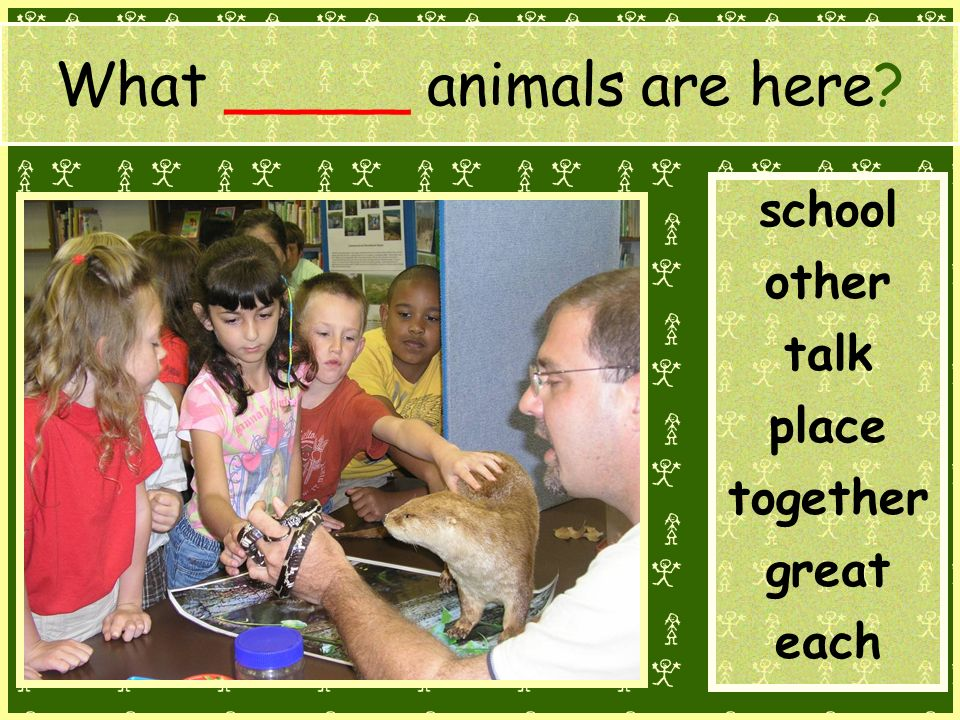 What _____ animals are here school other talk place together great each