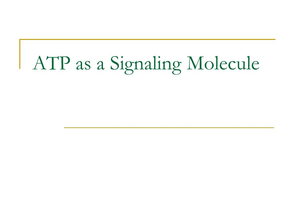 ATP as a Signaling Molecule