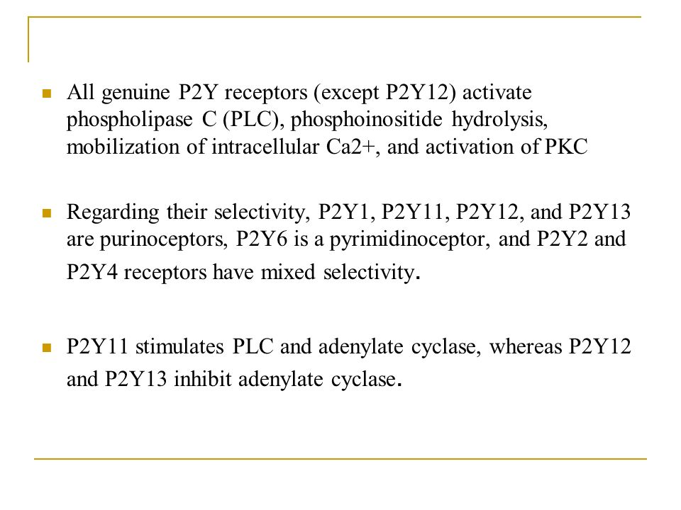 All genuine P2Y receptors (except P2Y12) activate phospholipase C (PLC), phosphoinositide hydrolysis, mobilization of intracellular Ca2+, and activation of PKC Regarding their selectivity, P2Y1, P2Y11, P2Y12, and P2Y13 are purinoceptors, P2Y6 is a pyrimidinoceptor, and P2Y2 and P2Y4 receptors have mixed selectivity.
