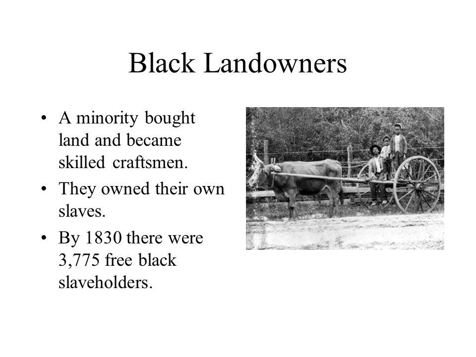 Black Landowners A minority bought land and became skilled craftsmen.