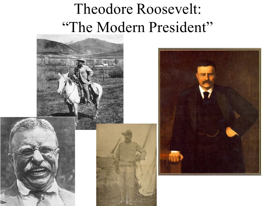 Theodore Roosevelt: The Modern President
