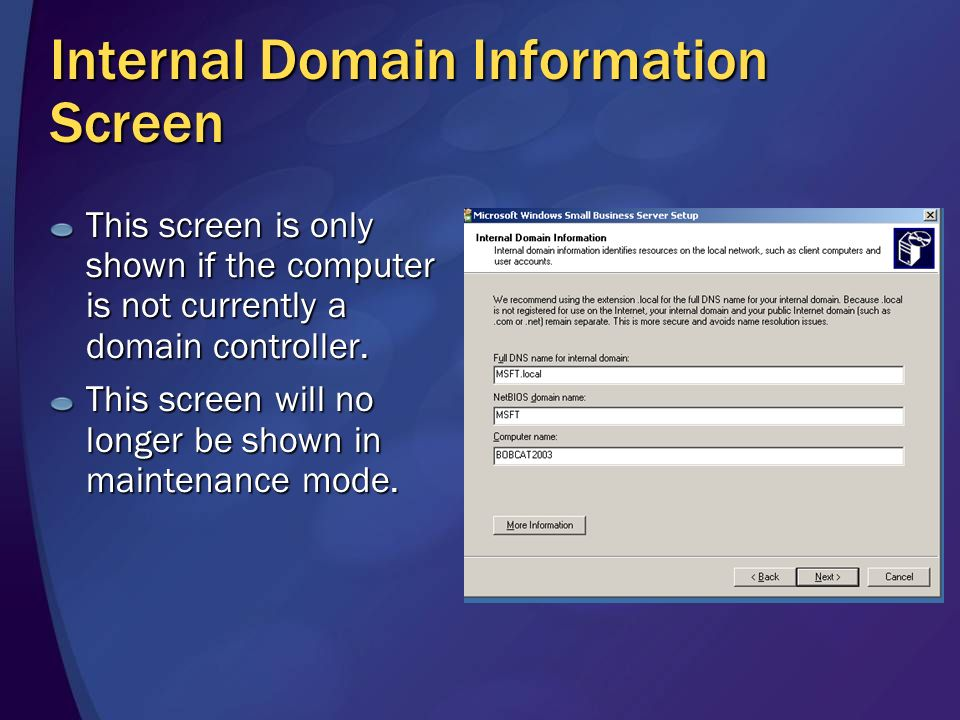 Internal Domain Information Screen This screen is only shown if the computer is not currently a domain controller.