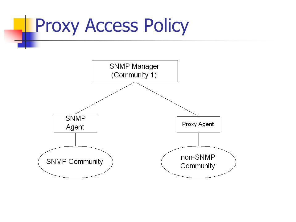Proxy Access Policy
