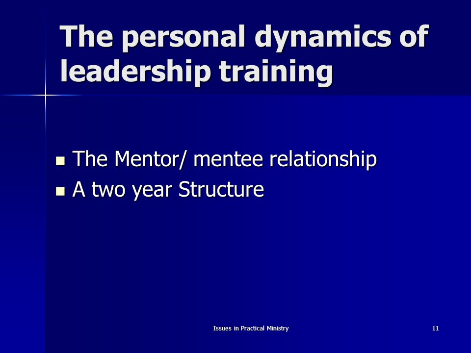 Issues in Practical Ministry11 The personal dynamics of leadership training The Mentor/ mentee relationship The Mentor/ mentee relationship A two year Structure A two year Structure