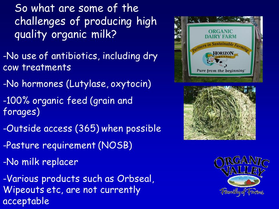 So what are some of the challenges of producing high quality organic milk.