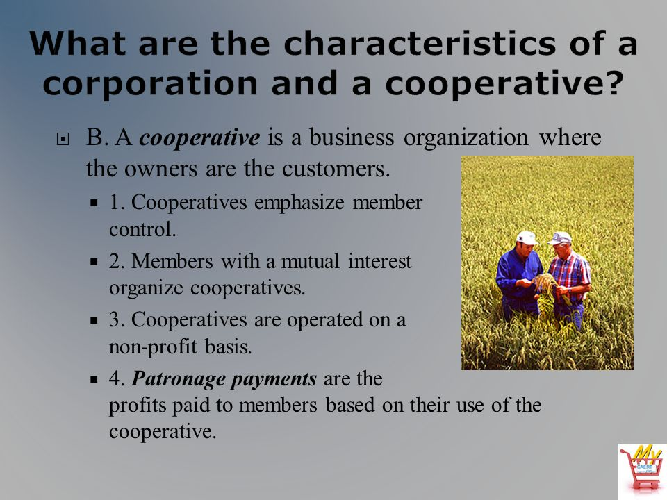 B. A cooperative is a business organization where the owners are the customers.
