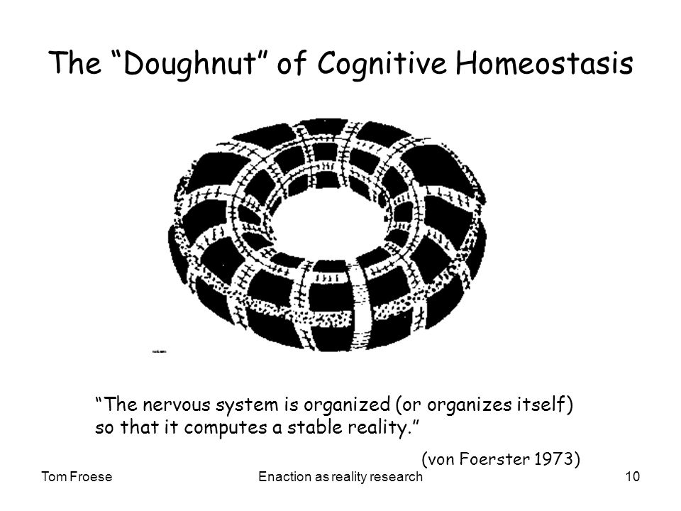 Tom FroeseEnaction as reality research10 The Doughnut of Cognitive Homeostasis The nervous system is organized (or organizes itself) so that it computes a stable reality.