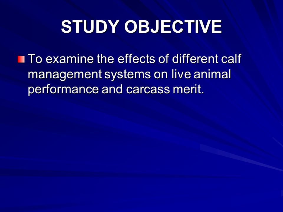 STUDY OBJECTIVE To examine the effects of different calf management systems on live animal performance and carcass merit.