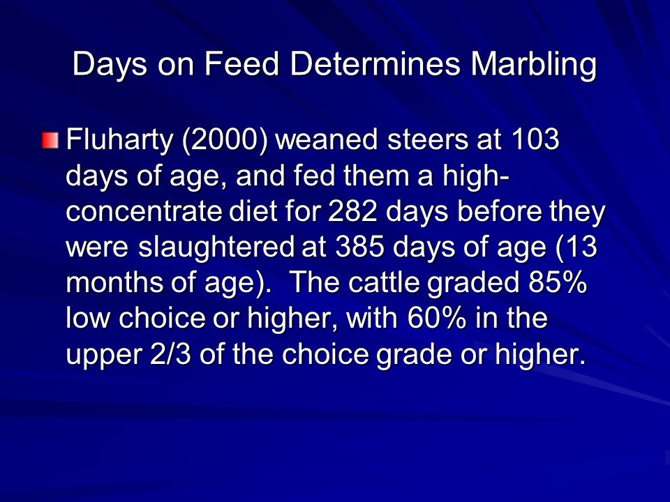 Days on Feed Determines Marbling Fluharty (2000) weaned steers at 103 days of age, and fed them a high- concentrate diet for 282 days before they were slaughtered at 385 days of age (13 months of age).
