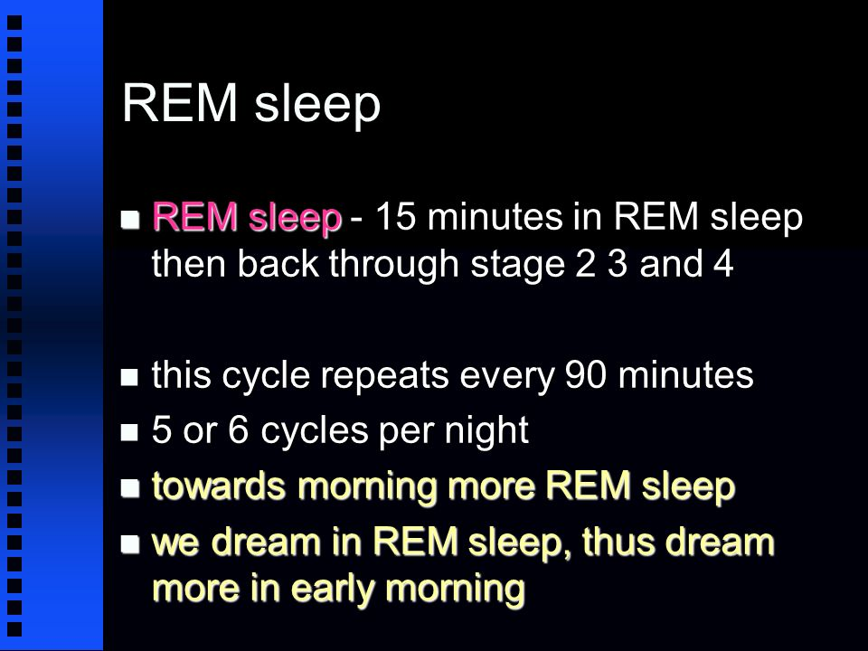 REM sleep n REM sleep - 15 minutes in REM sleep then back through stage 2 3 and 4 n this cycle repeats every 90 minutes n 5 or 6 cycles per night n towards morning more REM sleep n we dream in REM sleep, thus dream more in early morning
