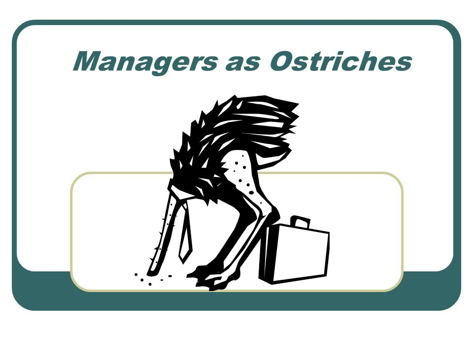 Managers as Ostriches
