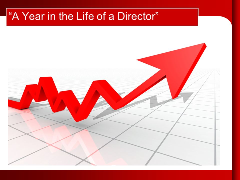 A Year in the Life of a Director