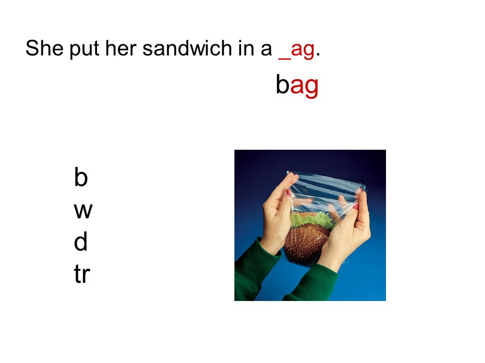 She put her sandwich in a _ag. bag b w d tr