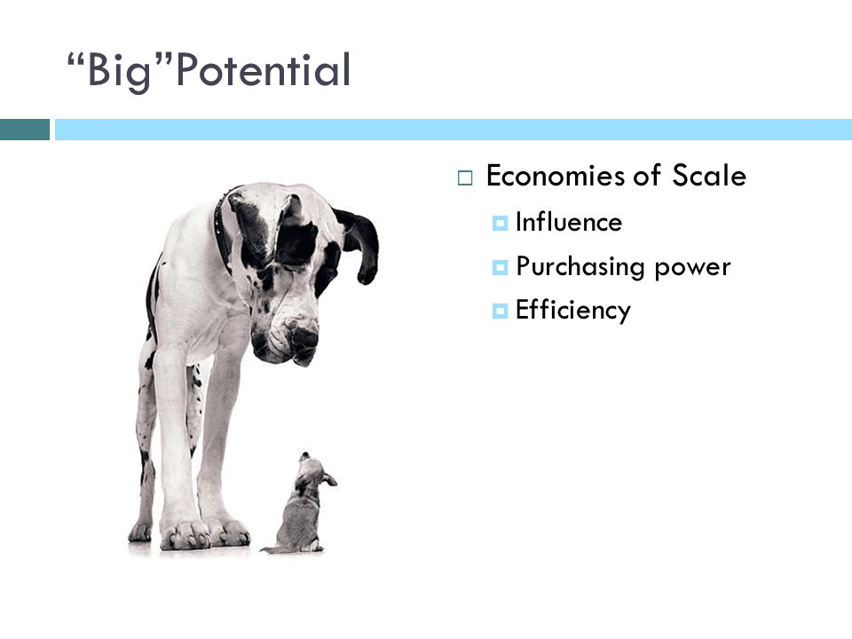 BigPotential Economies of Scale Influence Purchasing power Efficiency