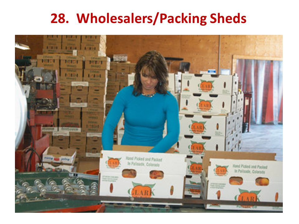28. Wholesalers/Packing Sheds